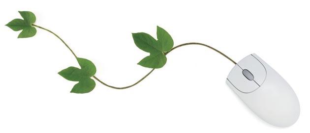 צמחונות וטבעונות ברשת - קישורים מומלצים