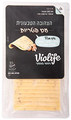 גבינה טבעונית