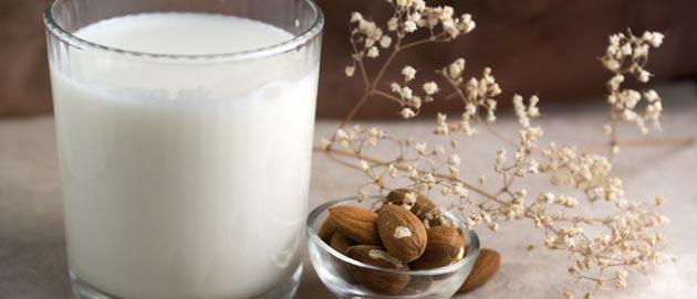 חלב סויה ותחליפי חלב נוספים