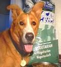 מדריך קניות לכלבתול הצמחוני
